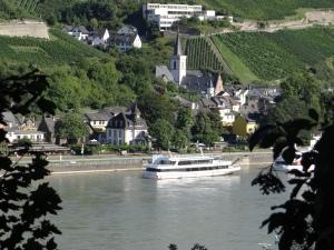 The view from Burg Rheinstein, Germany